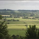 Simple Living In Somerset