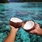 Sipping Coconuts